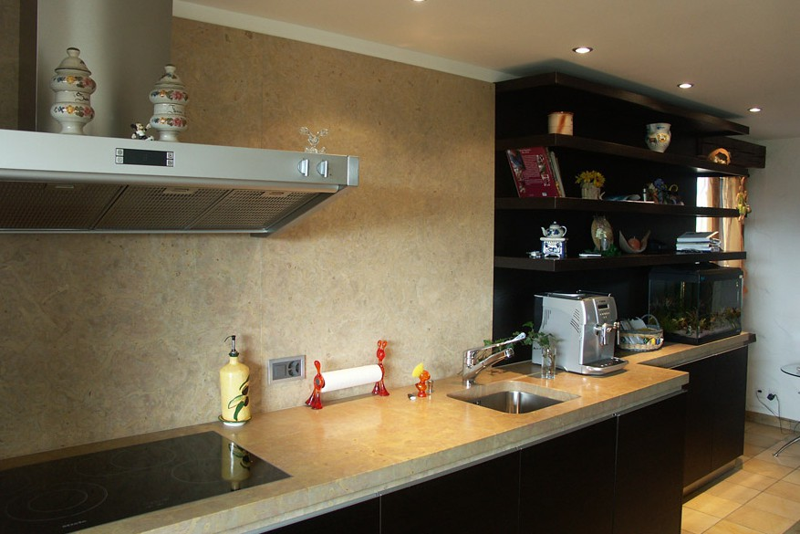 renovation-de-la-cuisine-dune-maison-a-malleray-59-452-7